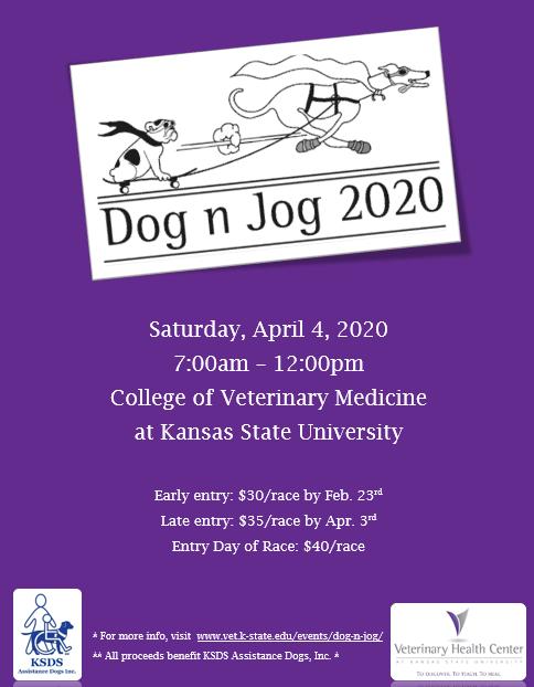 Dog N Jog 2020