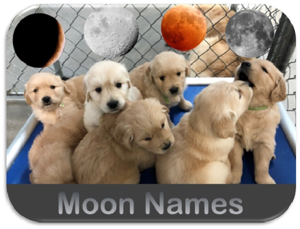 Moon names announcement